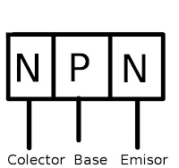 NPN explicación